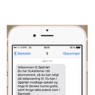 opkald til dansk mobil i udlandet